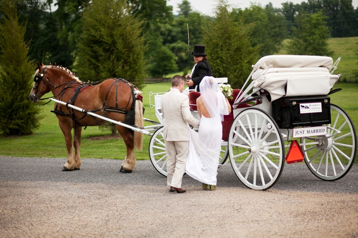 12 Katie Stoops Photography Bellwether Events Skyline Tent Company at home backyard Virginia wedding  Harmon's Carriages
